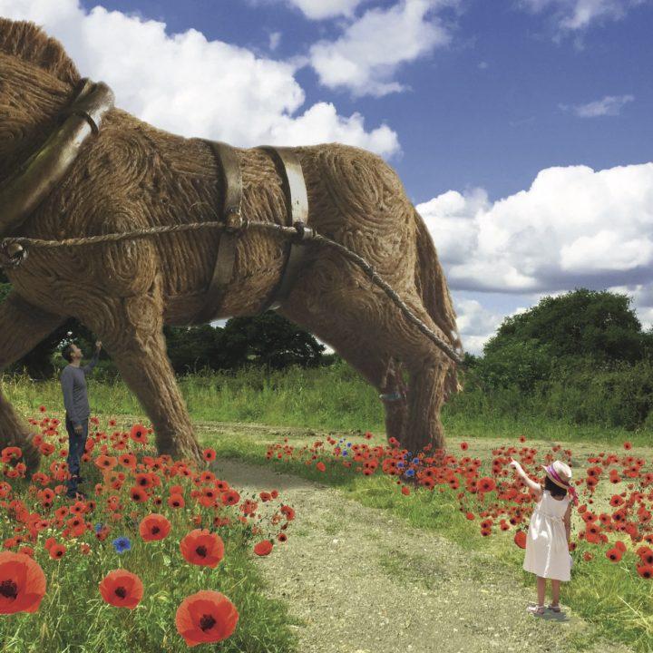 WREN Funding for War Horse Project